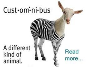 veraquest-zebra-goat
