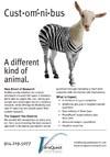 zebra-goat-thumbnail